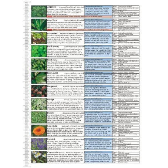 Microgreens Growing Guide - Fold Out Chart