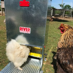 Supreme Poultry Treadle Feeder