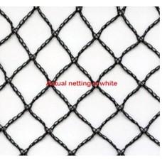 10 x 10m Commercial Grade Bird Net 50gsm