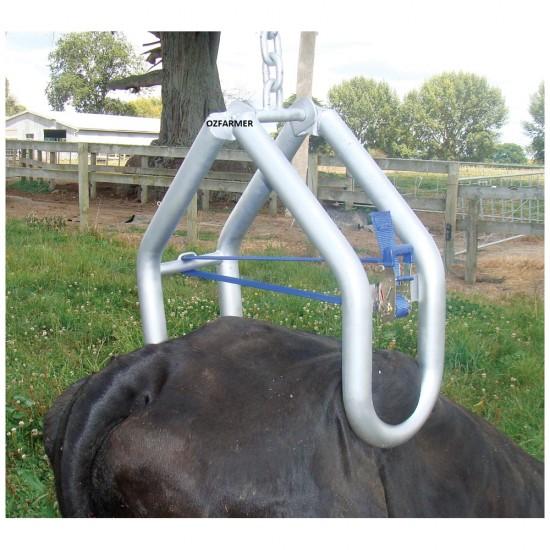 Cow Lifter Shoof Quick Lift