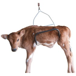 Calf Weighing Cradle