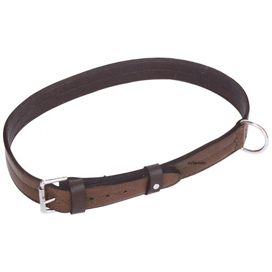 Collar Leather Bull