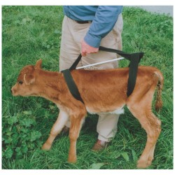 Griffiths Calf Sling Farming Supplies