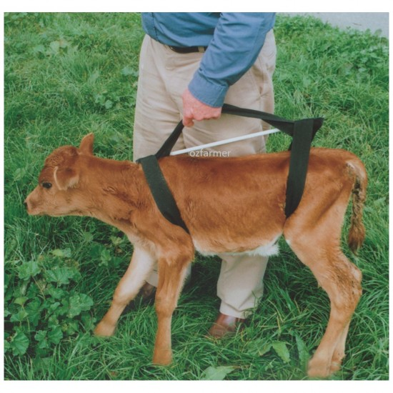 Griffiths Calf Sling