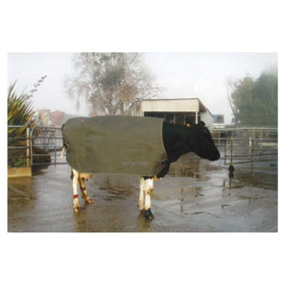Thermal Emergency Cow Cover
