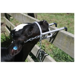 Calf Debudding Restrainer