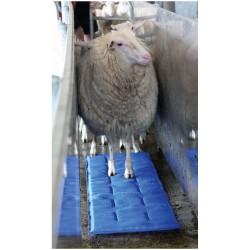 Hoofmat Sheepmat Premium blue