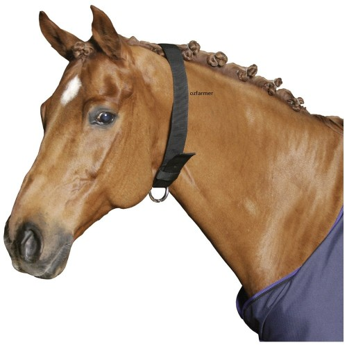 Collar Horse Webbing Black