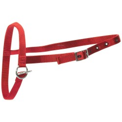 Leading Halter Nylon Calf