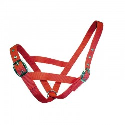 Cattle Halter Webbing Cow Economy