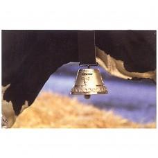 Cow Bell Round Cast Medium