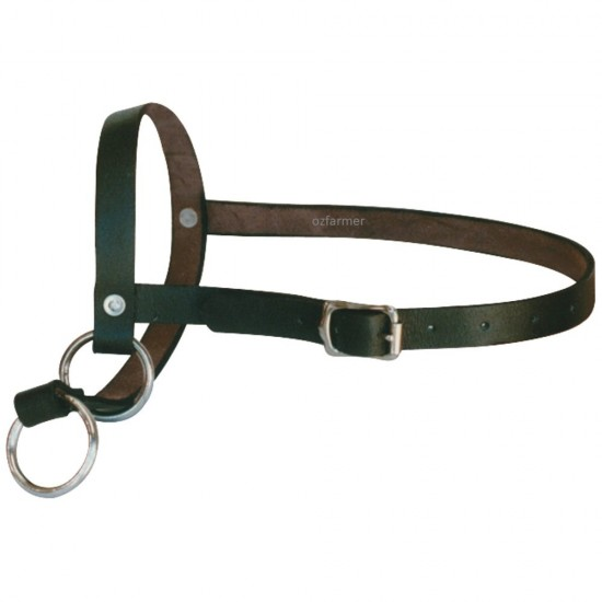 Leading Halter Leather Calf