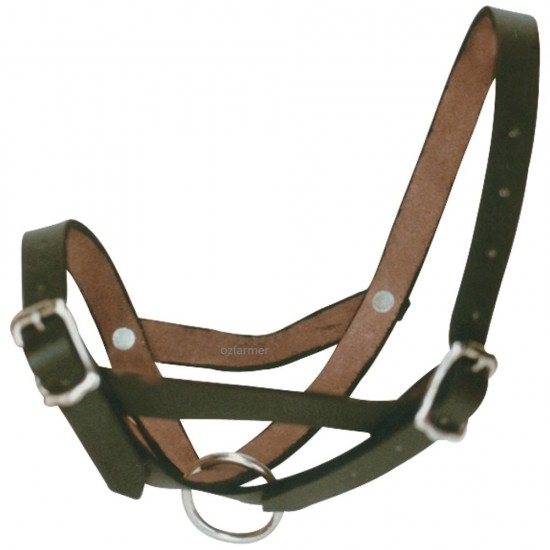Tethering Halter Leather Calf