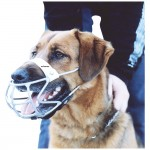 Dog Muzzle Industrial
