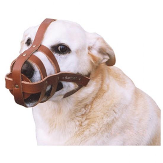 Dog Muzzle Leather