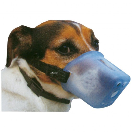 Dog Muzzle Safety