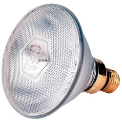 Phillips Clear Infrared Brooder Lamp Globe Only