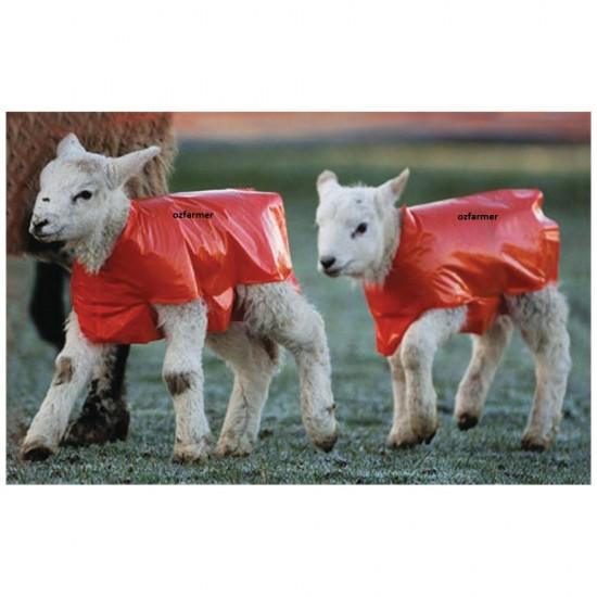 Lamb Macs 25-pack