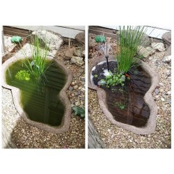 Splosht Fishpond / Water Feature Natural Water Cleaner