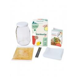 Kombucha Kit including SCOBY