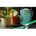 Gardening, Growing and Sprouting Accessories