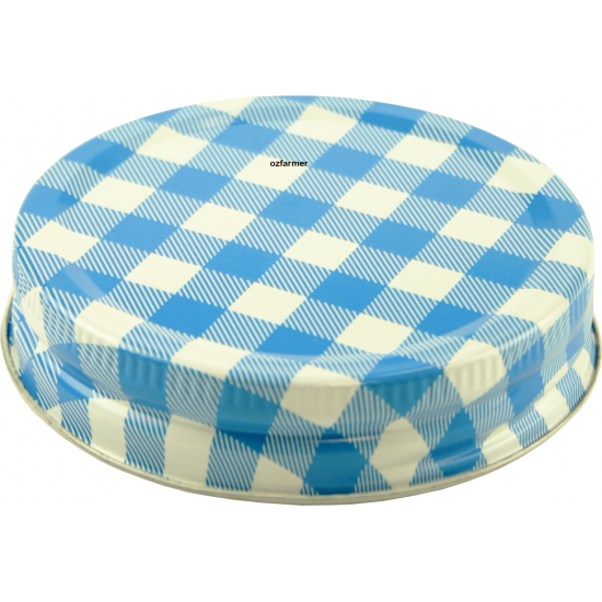 Blue Check Lid One Piece High Temp Regular Mouth Suits All Ball Mason Regular Mouth BPA FREE (1 Only)