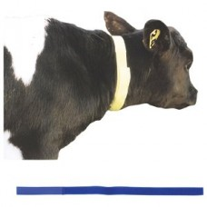 10x Calf Neck Identification Bands