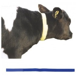 Calf Neck Identification Bands Pack of 10 Farming Supplies