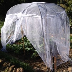 Mini Fruit Saver Garden Net for Small / Dwarf or Potted Fruit Trees
