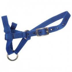 Alpaca Webbing Halter - High Quality Suit Medium Size Alpaca Farming Supplies