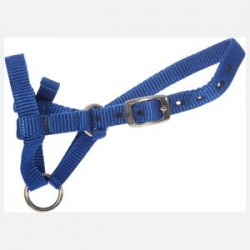 Alpaca Webbing Halter - High Quality Suit Small Alpacas