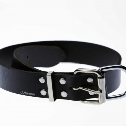 Black Leather Collar for Calf Dog