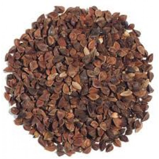 Buckwheat Seed Bulk Sprouting Organically Certified