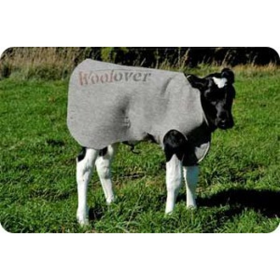 Calf Cover Woolover Coat