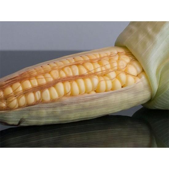 Corn Sweet Balinese Seed Packet Organically Certified