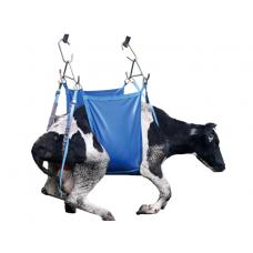 Cow Daisy-Lifter