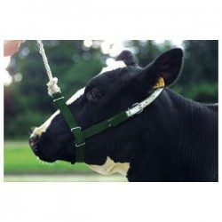 Cow Halter Webbing Leading or Tethering Heavy Duty Farming Supplies