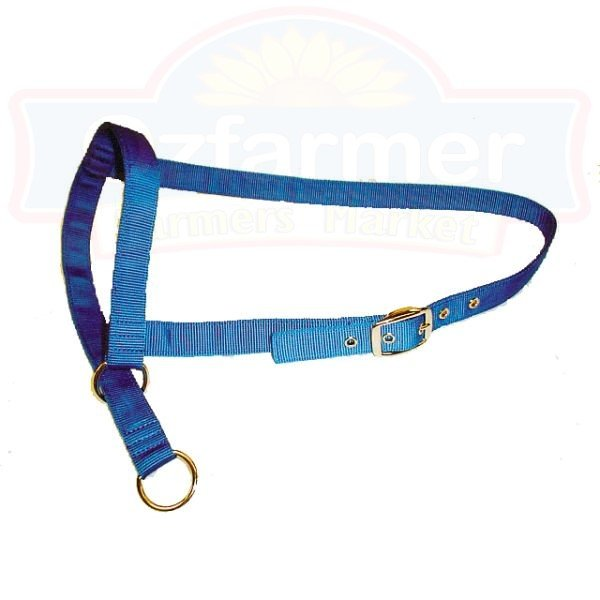 Cow Leading Halter Nylon Farming Supplies