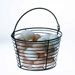 Egg Collection Basket Chicken, Duck, Poultry