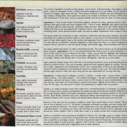 Fermentation Probiotics Guide