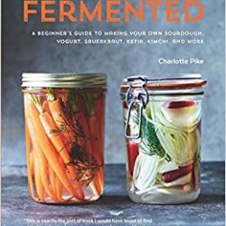 Fermented A Beginner's Guide