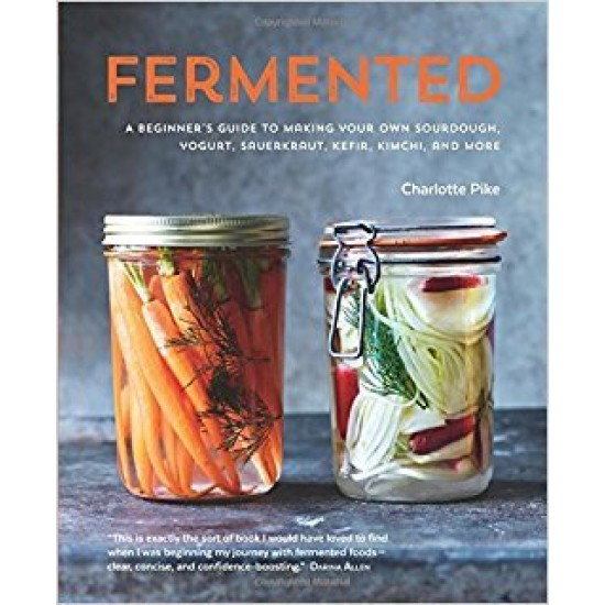 Fermented A Beginners Guide