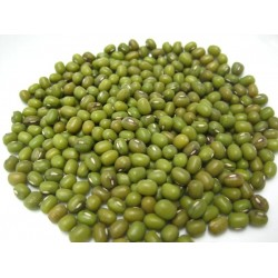 Mung Bean / Bean Sprout Seed Sprouting Bulk Quantities Organically Certified