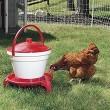 Optional Legs to suit 18l Poultry Drinker Bucket Waterer