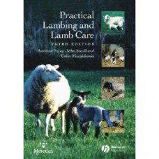 Practical Lambing and Lamb Care: A Veterinary Guide 3rd edition.