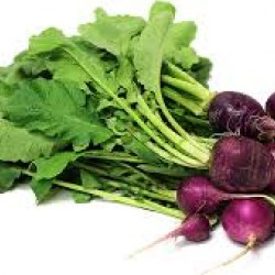 Radish Purple Plum Organically Certified Seed