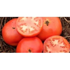 Tomato Flora Lou Seed Packet Organically Certified PAST BEST BY SOW DATE