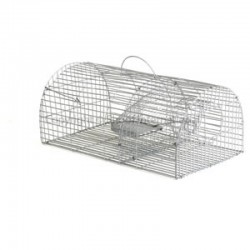 Trap Rat Trapdoor