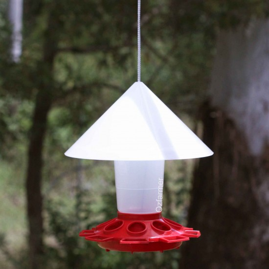 Wild Bird Feeder Parrots, Budgies, Magpies, Finches etc.