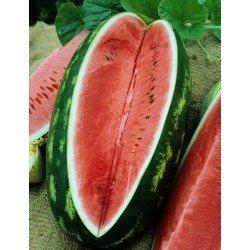 Congo Watermelon Seed Organically Certified